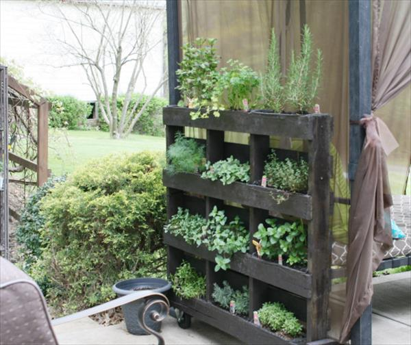 From pallets to a palace wakeupcut for Outside herb garden designs